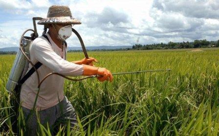 tl_files/file_e_immagini/files/NEWS/fitosanitari_agricoltura.jpg